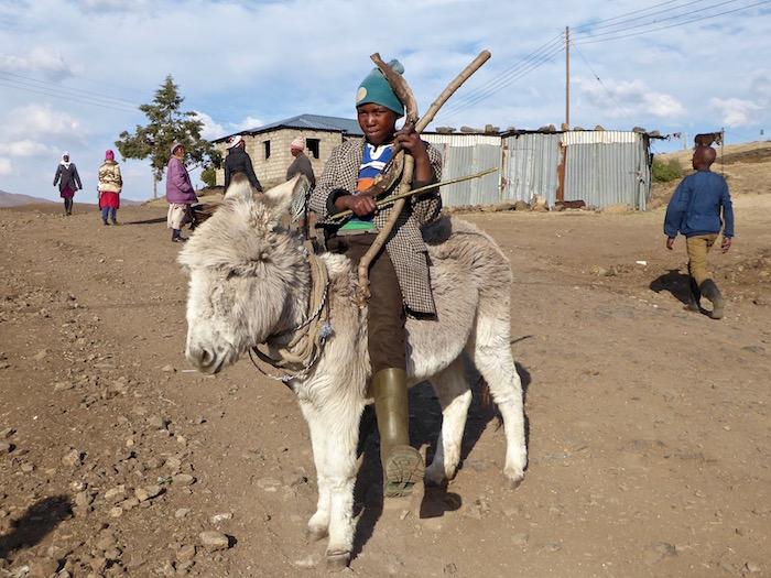 Pastore basotho a cavallo di un pony in Lesotho