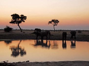 soultravelling-safari-fotografico-6