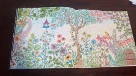 livro-de-colorir-jardim-secreto-claudia-dos-reis