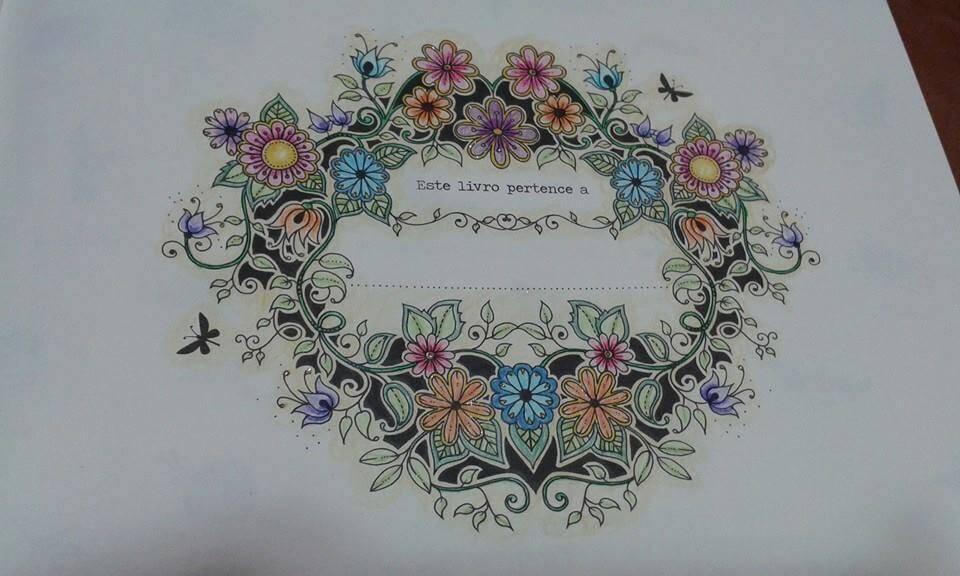 livro-de-colorir-jardim-secreto-valeria-burle