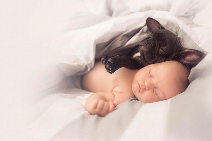 bebê-e-cachorro-amigos