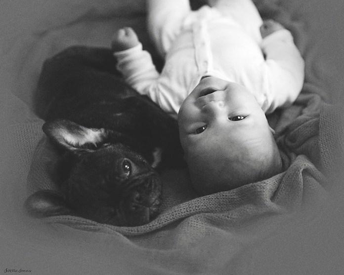 bebê-e-cachorro-felizes