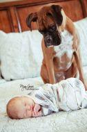 dicas para tirar fotos mãe e filhos newborn cachorro