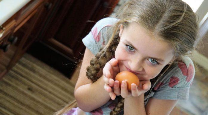 alimentacao-infantil-ovo-barato-nutritivo