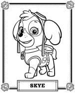 desenhos-para-colorir-patrulha-canina-skye