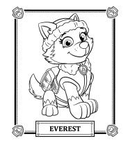 everest-patrulha-canina-desenhos-para-colorir