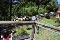 alpen-park-treno-canela