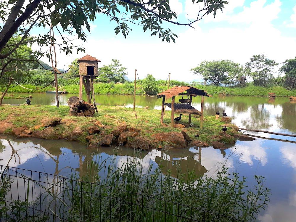 zoo-de-gramado