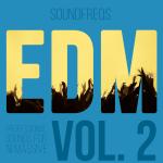 EDM Vol 2 NI Massive Presets