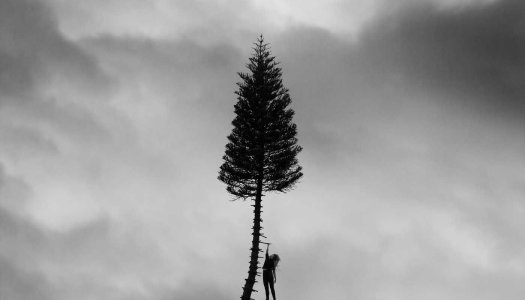 Album Review: Manchester Orchestra – A Black Mile To The Surface