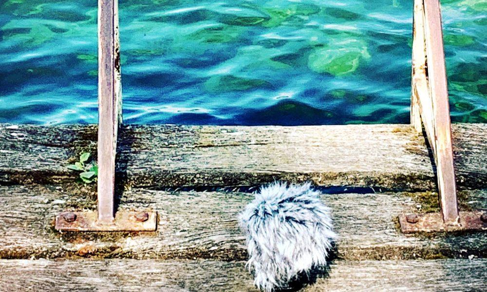 Tonaufnahmen am Laacher See