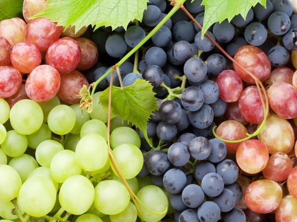 Grapes are not bad rather good
