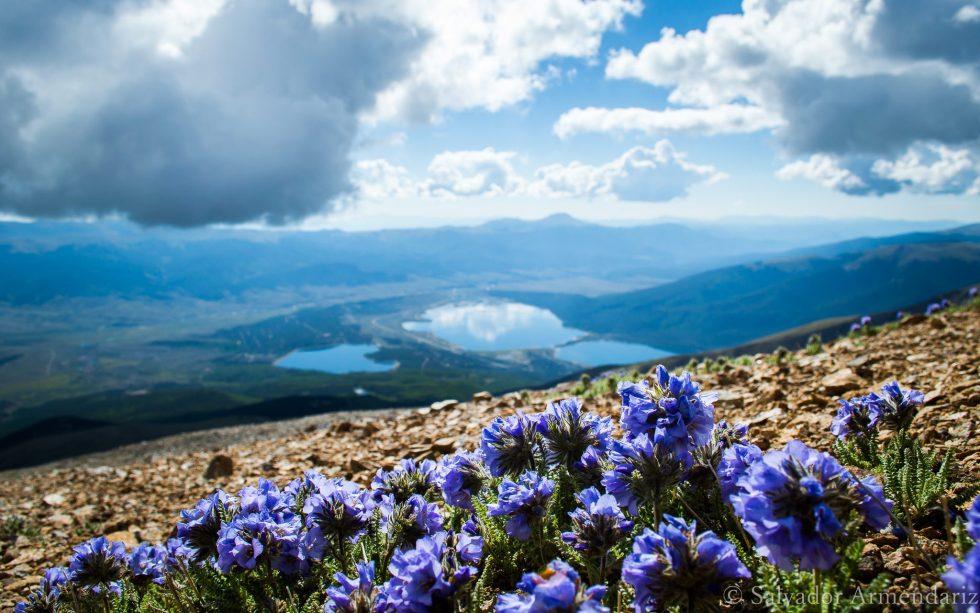 Mount Elbert Colorado