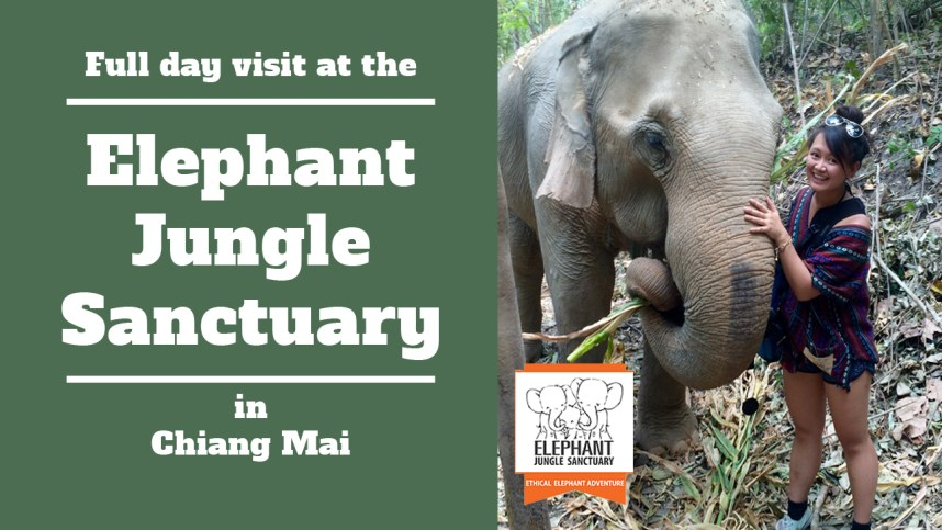 elephantJungleSanctuarycover