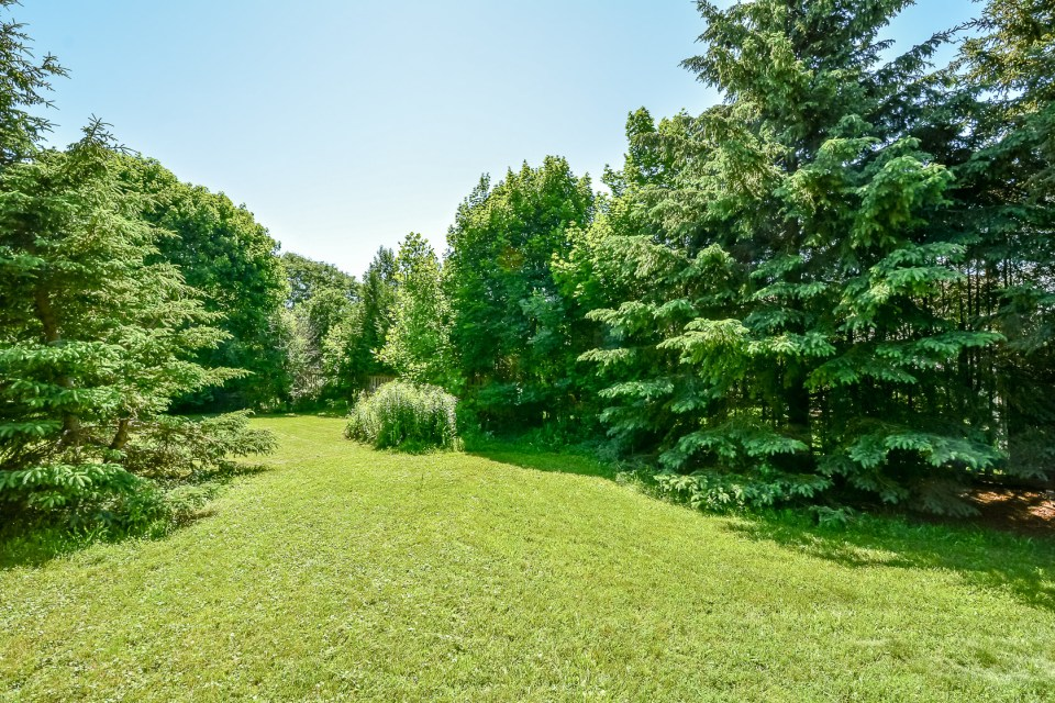 Large Yard in Guelph 21 Malvern