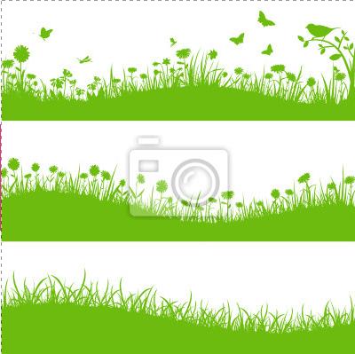 herbe papier peint