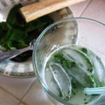 Enjoying Summer with Mojitos and Grilled Peaches