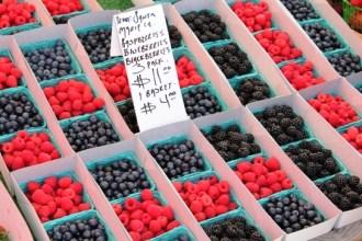 Fruit-Berries 2011-07-02 Torrance Farmers Market 029