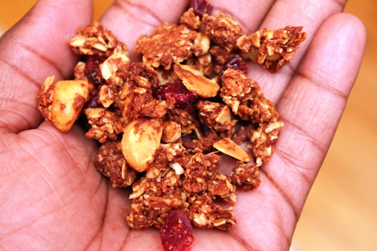 2011-11-16 By Hand Granola, Product Review 011
