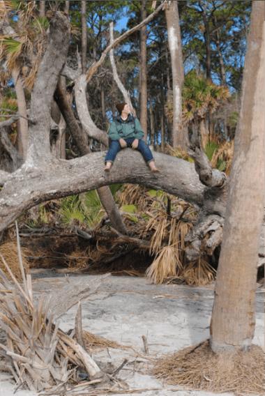 Tucker sitting on a tree limb.