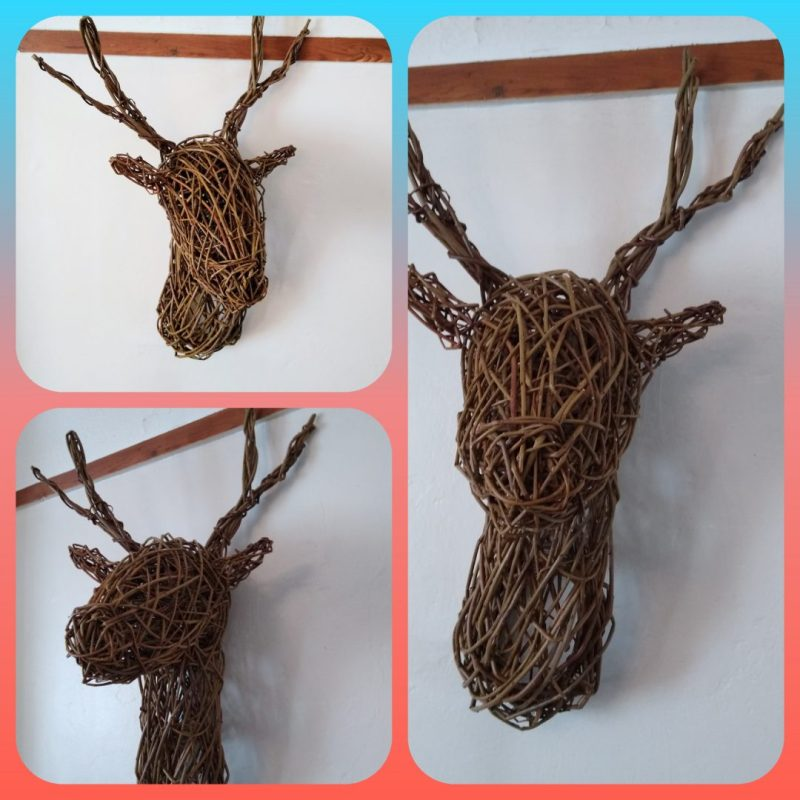 comilation picture 3 views or reindeer, stag head