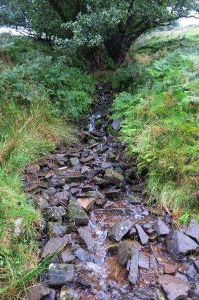 Over a small stream