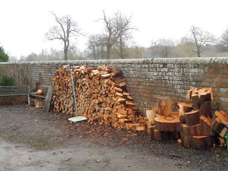Plenty of firewood but not so cold at the moment