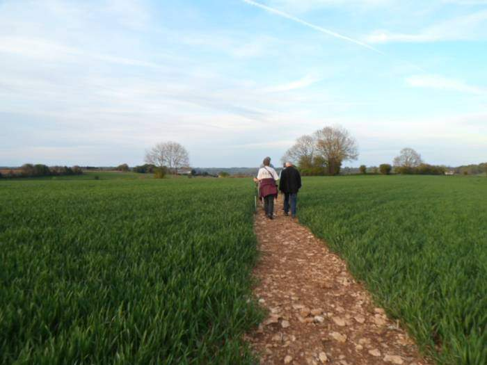 And emerge on to a very well marked path through this farmer's field