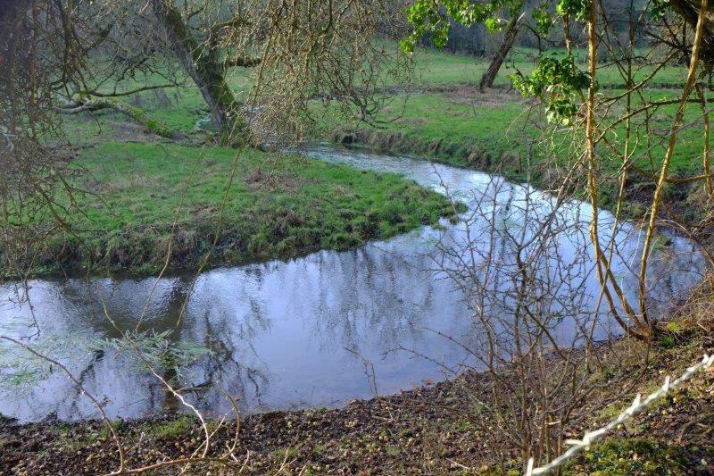 Plenty of water in that stream