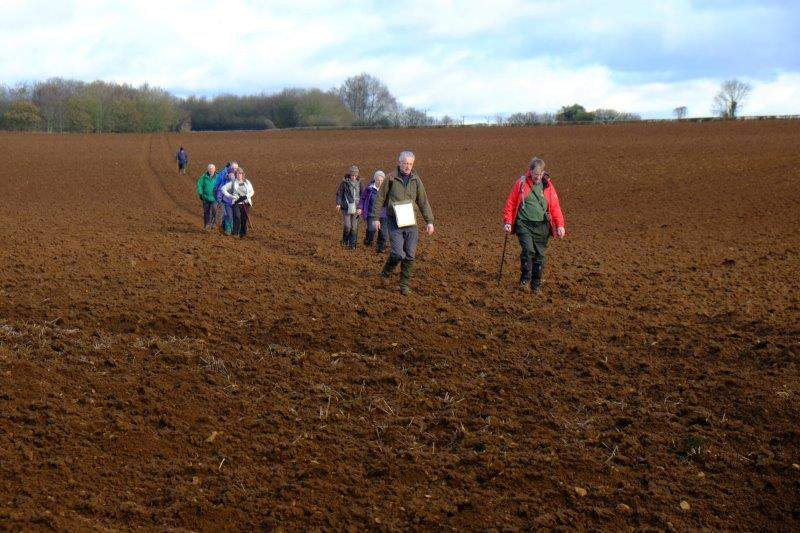 Followed by a recently ploughed field   - even more muddy
