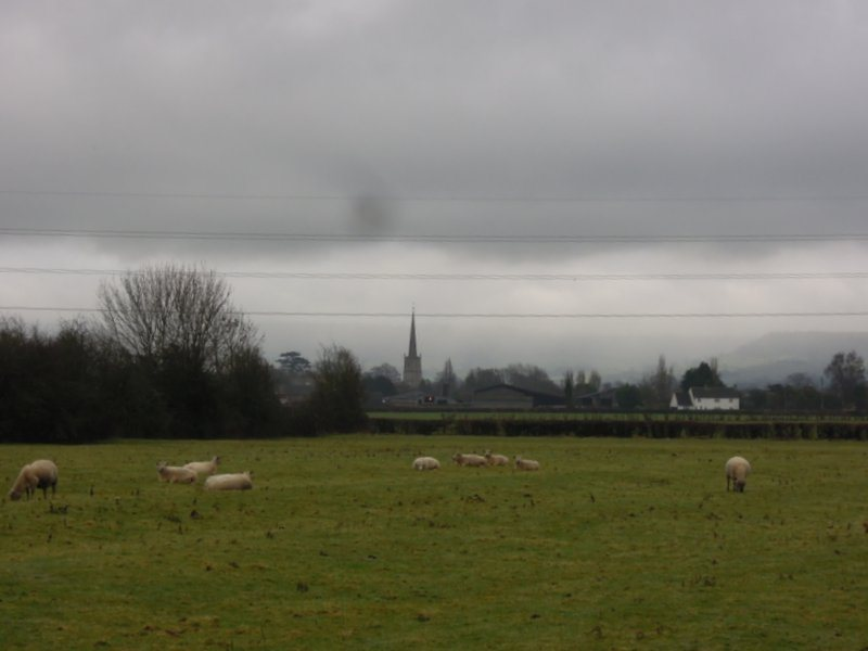 The thin spire of Slimbridge church in the distance