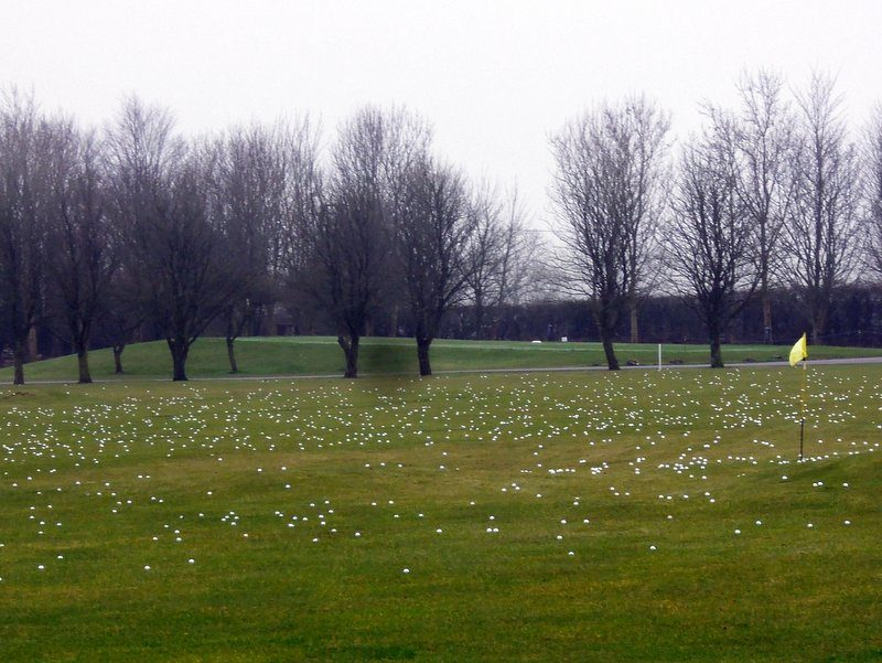 Snowdrops? No, golf balls