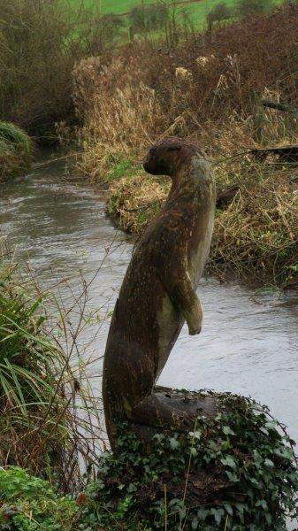 The Otter seems unimpressed