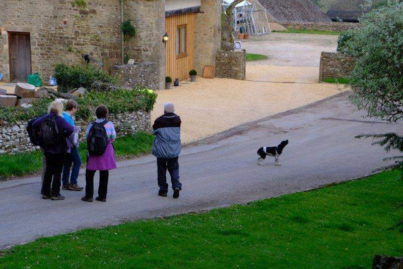 Dog taking exception to our walking on his road