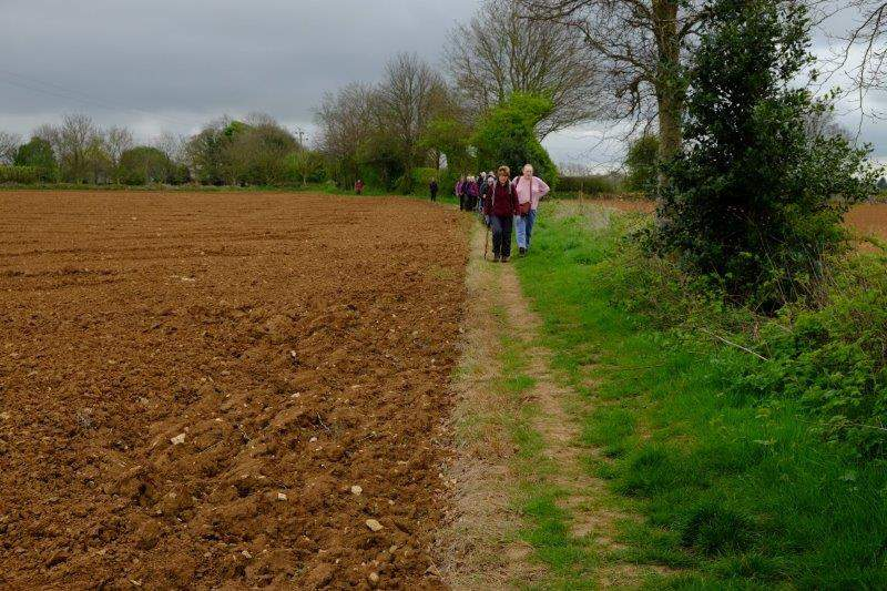 Before picking up a footpath along a field