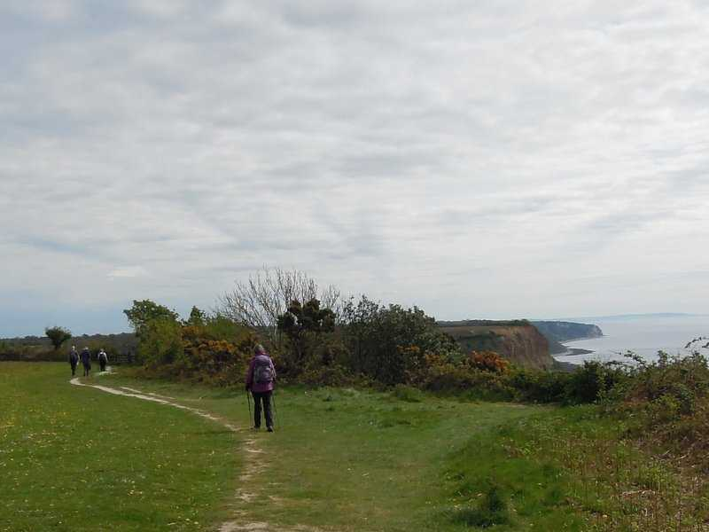 Now across the cliff top