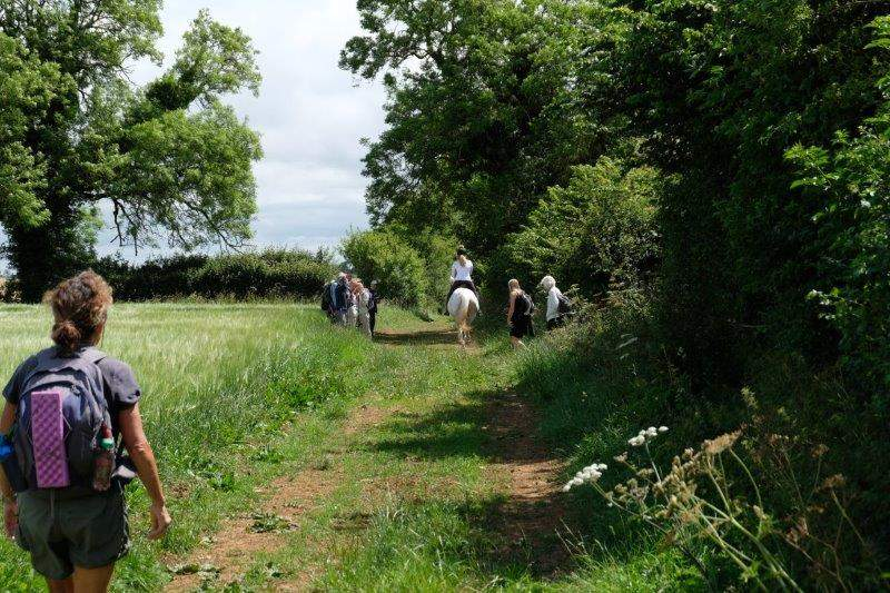 Now on a bridle path as we encounter a horse and rider