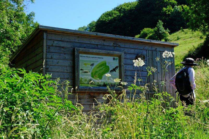 By the Nature Reserve Hut