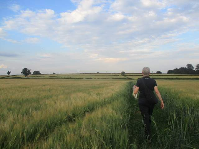 Karen leads us through fields of barley