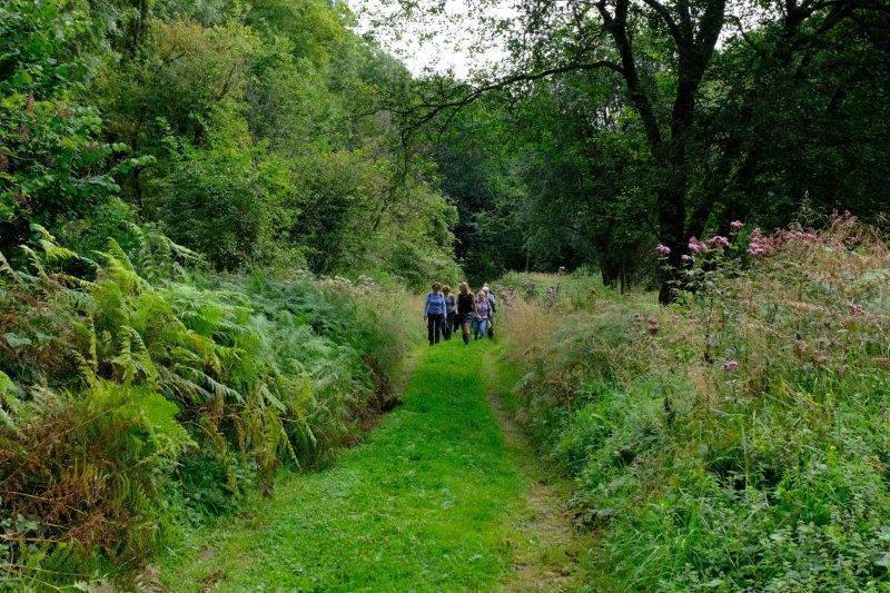Along a broad grassy track