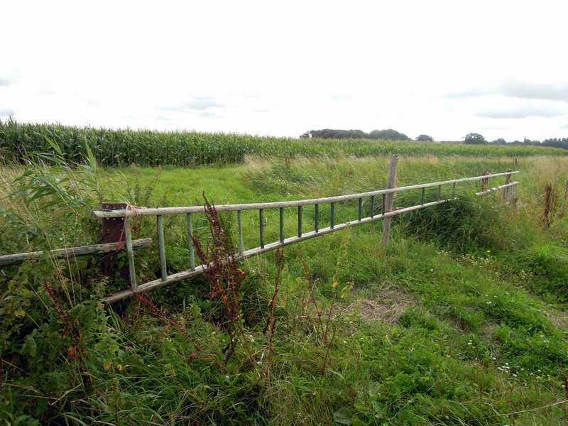 Ladder-gate