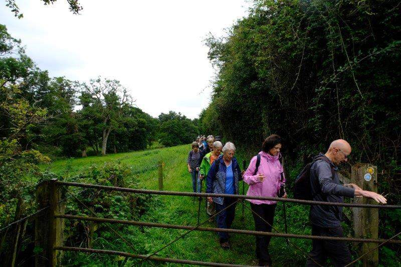 After coffee we follow the Painswick stream up valley