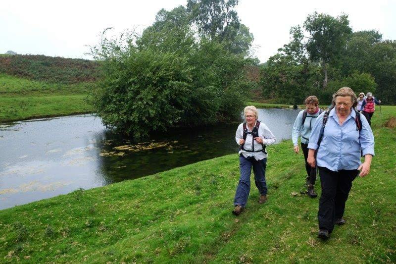 Heading round a familiar pond