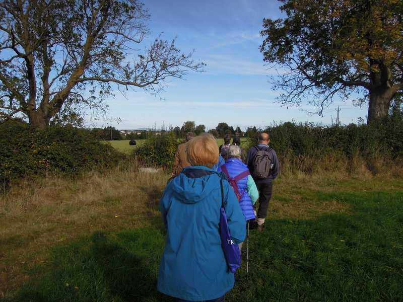 As we cross the fields