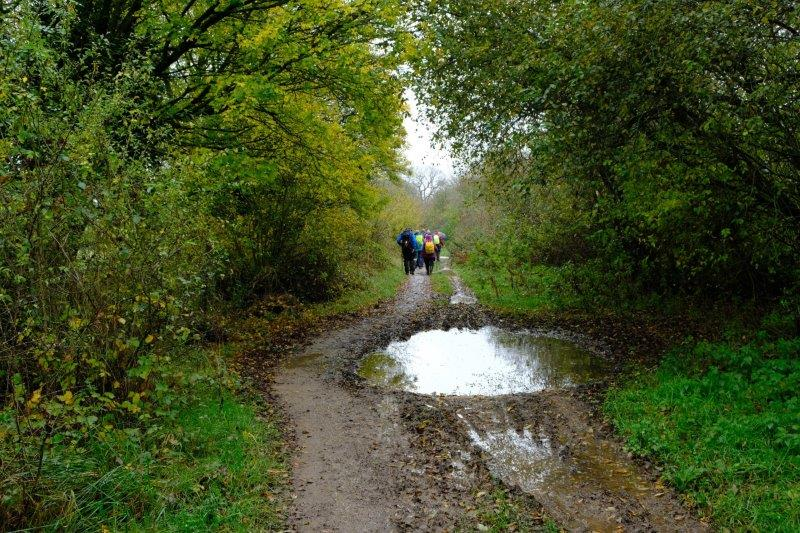 To reach a wider muddy track