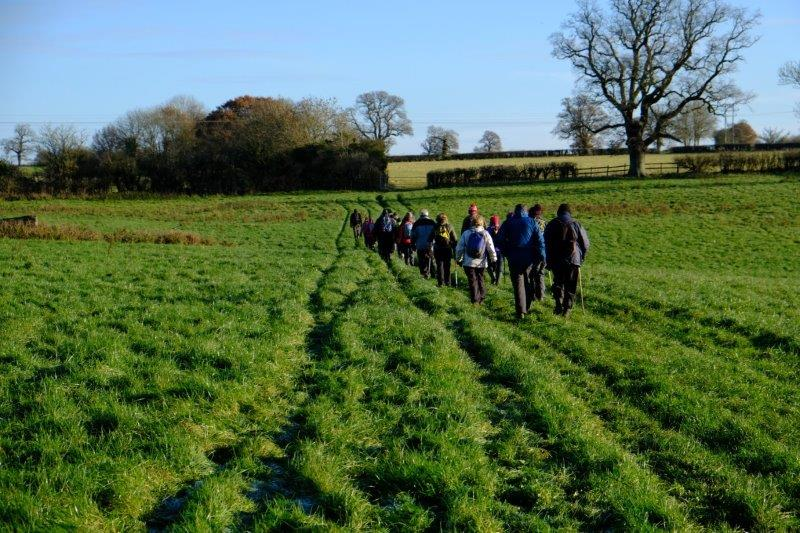 Now heading over fields