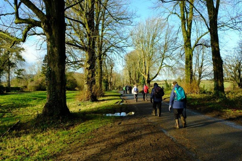 We ponder the success of our first walk of 2018 and look forward with  eager anticipation to many more