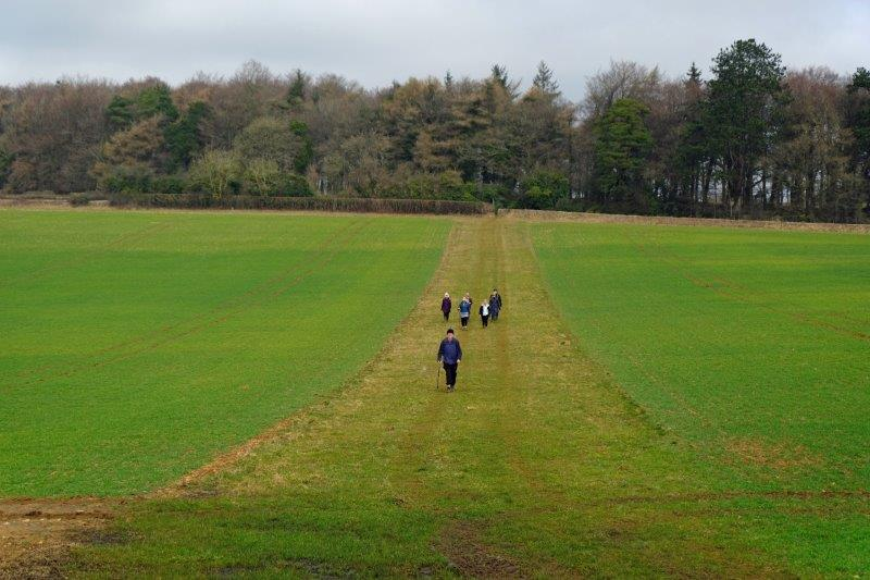 Then our path crosses fields