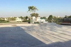terrace 14 apr 16 (6)