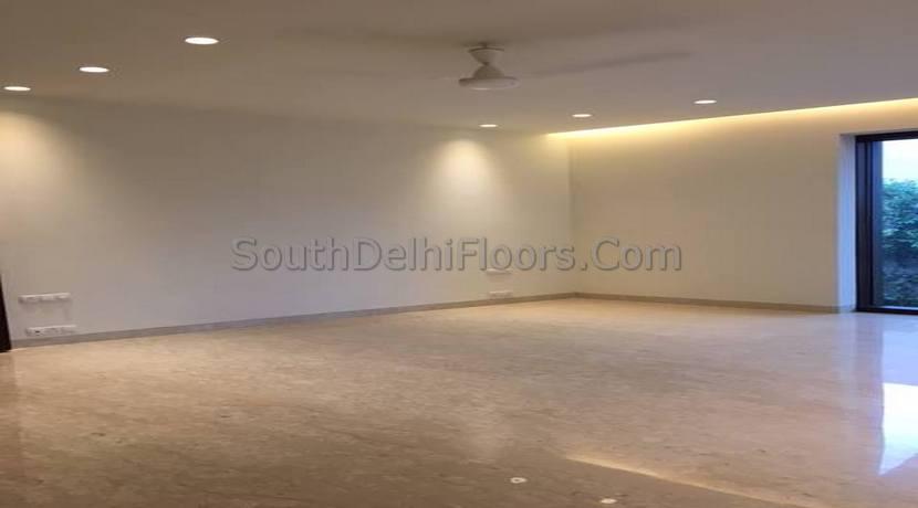 Vasant Vihar New Delhi (2)
